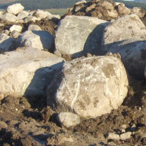 Irish Granite Boulders